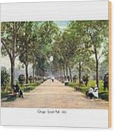 Chicago - Lincoln Park - 1910 Wood Print
