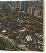Chicago Lincoln Park Zoo Wood Print