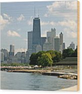 Chicago Skyline And Lakefront Wood Print