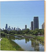 Chicago Skyline From Lincoln Park Zoo Wood Print