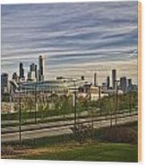 Chicago Skyline From The Sledding Hill Wood Print