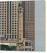 Chicago Water Tower Wood Print