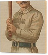 Chicago White Stockings 1887 Wood Print