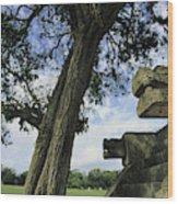 Chichen Itza Scene Wood Print by Steve Winter
