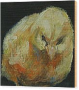 Chick 02 Wood Print