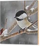Chickadee 118 Wood Print