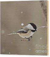 Chickadee In The Snow Wood Print
