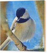 Chickadee On A Bright Day -digital Paint I Wood Print