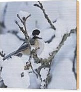 Chickadee Pictures 507 Wood Print