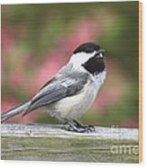 Chickadee Song Wood Print