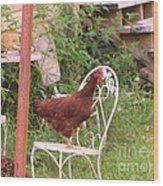 Chicken In The Chair Wood Print
