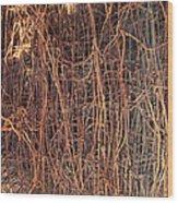 Chickenwire Rusty Wood Print