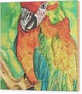 Chico Wood Print