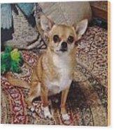 Chihuahua Cutie Wood Print