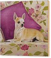 Chihuahua II Wood Print
