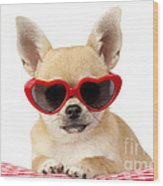 Chihuahua In Heart Sunglasses Dp813 Wood Print by Greg Cuddiford