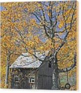 Childhood Memories Tire Swing  Wood Print