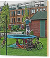 Children At Play In Enkhuizen-netherlands Wood Print