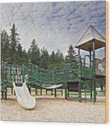 Childrens Playground At Lake Merwin Park Wood Print