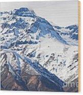 Chilean Andes Wood Print by Susan Hernandez