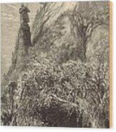 Chimney Rock At Hickory-nut Gap 1872 Engraving Wood Print