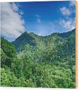 Chimney Tops Mountain In Great Smoky Mountains  Wood Print