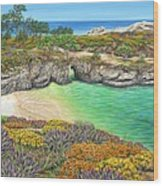 China Cove Paradise Wood Print