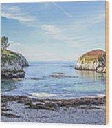 China Cove Point Lobos Wood Print