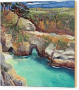 China Cove Point Lobos Wood Print