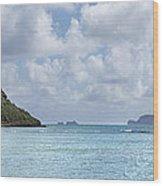Chinamans Hat Panorama - Oahu Hawaii Wood Print