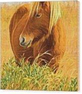 Chincoteague Pony Profile Wood Print