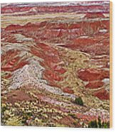 Chinde Point In Painted Desert In Petrified Forest National Park-arizona Wood Print
