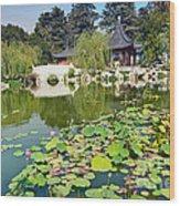 Chinese Garden - Huntington Library. Wood Print