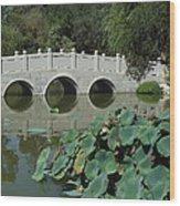Chinese Garden Scene Wood Print