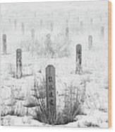 Chinese Grave Markers Wood Print