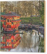 Chinese Reflections  Wood Print