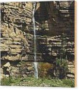 Chipetal Falls Wood Print