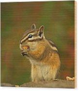 Chipmunk Loving Honey Roasted Peanuts Wood Print