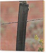 Chipmunk On Fence Post Wood Print