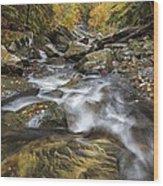 Chippewa Creek In Fall Wood Print