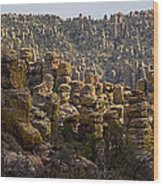 Chiricahua National Park - The Grotto 02 Wood Print