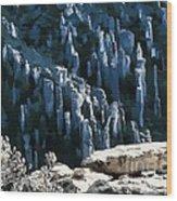 Chiricahua Pinnacles D Wood Print