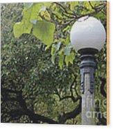 Chittenden Garden Wood Print