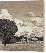 Chitzen Itza Panorama Sepia Wood Print
