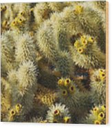 Cholla Cactus Garden Mirage Wood Print