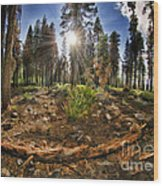 Chop Up Log Wood Print