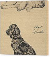 Chow And Spaniel, 1930, Illustrations Wood Print by Cecil Charles Windsor Aldin