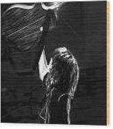 Chrissie Hynde Encore By Denise Dube Wood Print