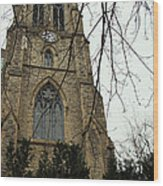 Christ Church Cathedral  Wood Print