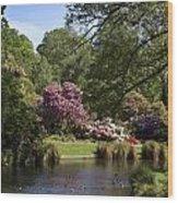 Christchurch Botanic Gardens New Zealand Wood Print